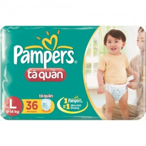 Pampers Pants  L 36* 6 vpack