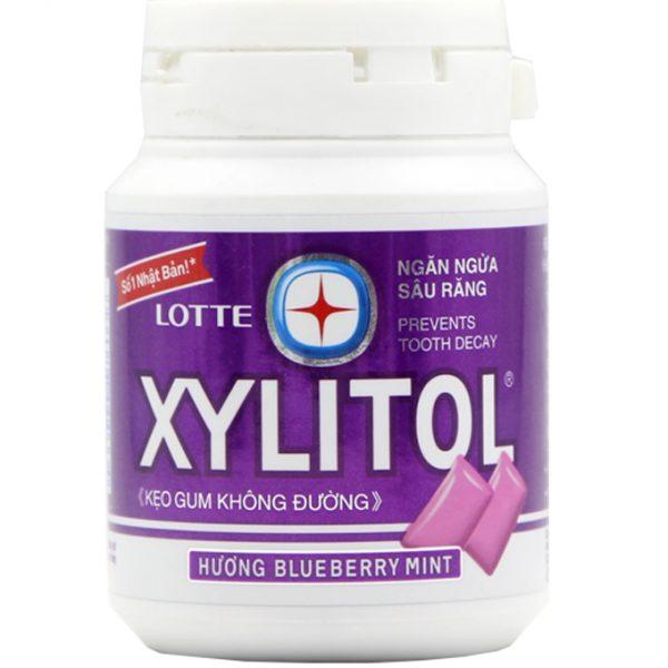gum-xylitol-blueberry-mint-hu-58g-1-org-1