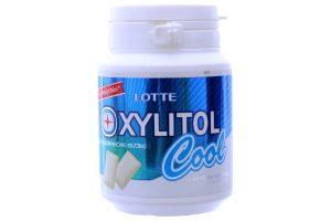 Sugar free gum Lotte Xylitol 58g mint