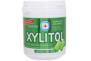 Sugar free gum Xylitol Lime Mint 145g